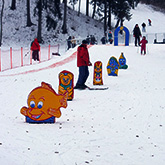 Skiing track in Birstonas