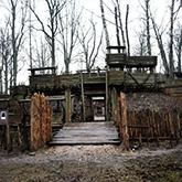 Castle in Lielvarde