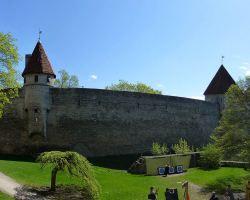 Сад датского короля в Таллине