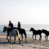 Horse riding in Palanga