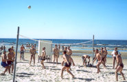 Непременный волейбол