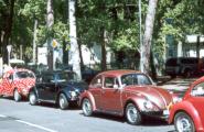 Каждый год по улицам города шествует парад 'жуков'